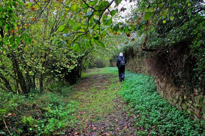 Caminando por la antigua Calzada Real.